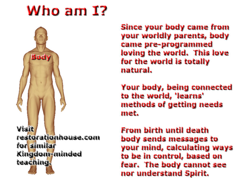 Why Does God Have a Body?